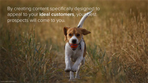 Relevant_content_acts_as_a_magnet_HubSpot